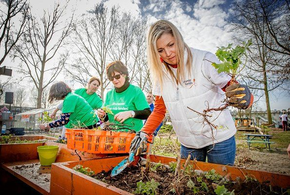 Queen Maxima of the Netherlands getting her gloves dirty